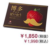 博多チョコぱいおう(24枚入り)