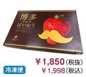 【冷凍便】博多チョコぱいおう(24枚入り)